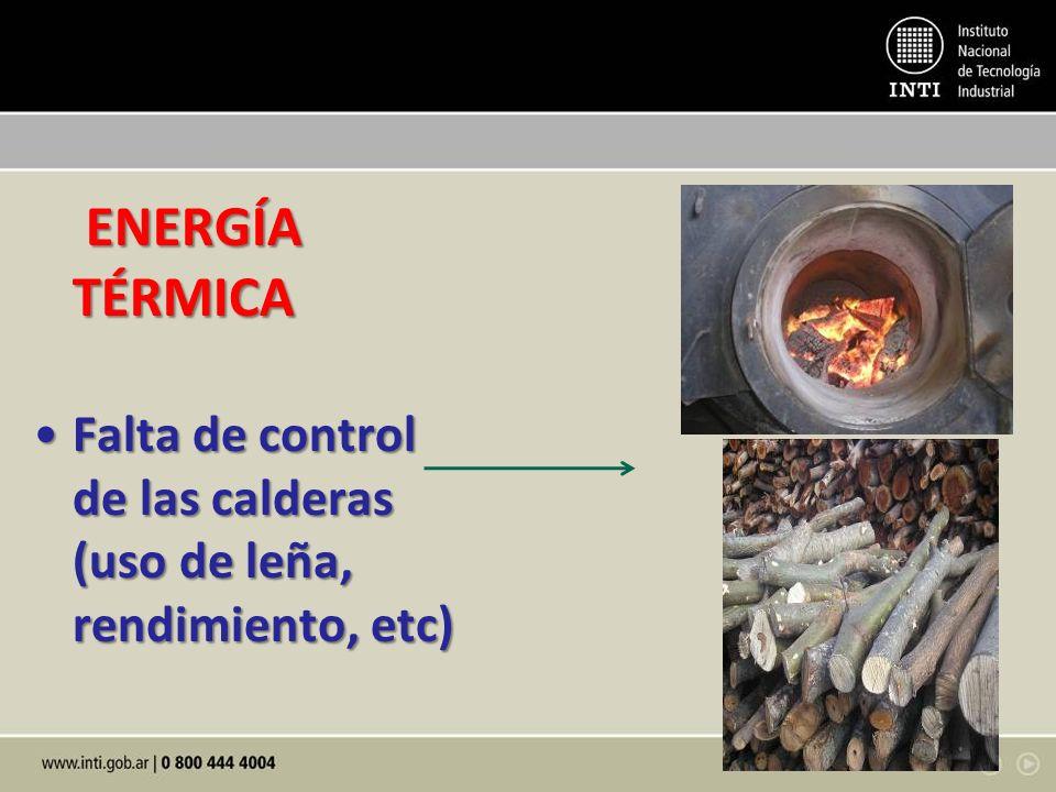 ENERGÍA TÉRMICA ENERGÍA TÉRMICA Falta de control de las calderas (uso de leña, rendimiento, etc)Falta de control de las calderas (uso de leña, rendimiento, etc)