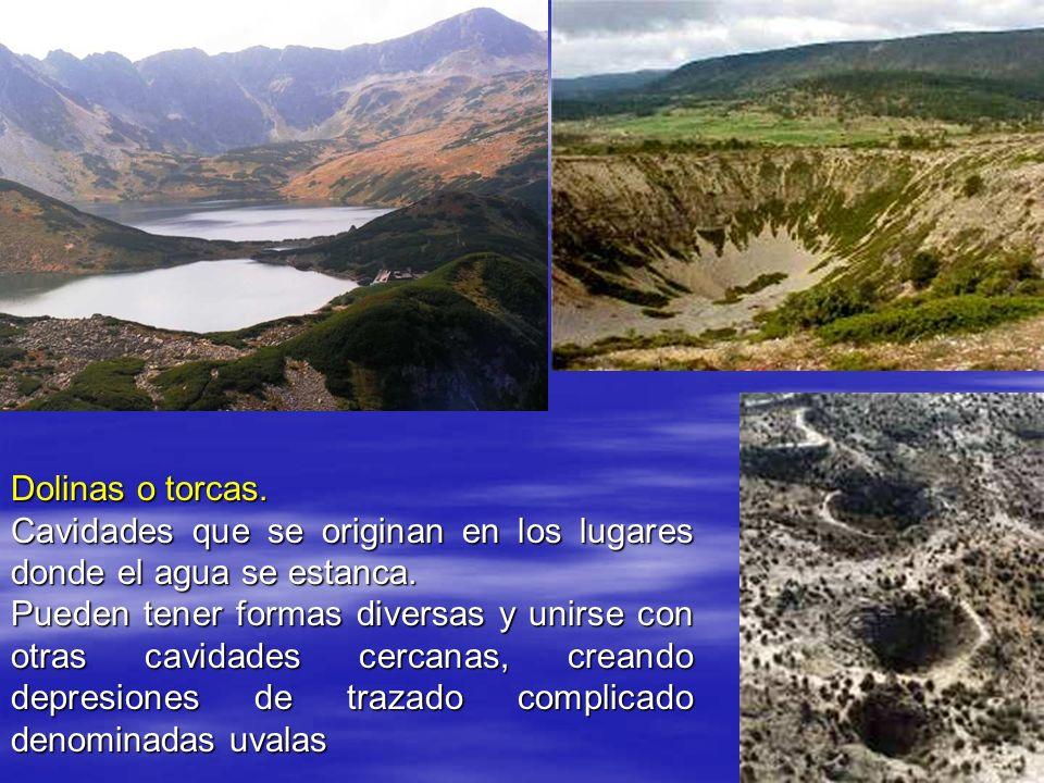 Dolinas o torcas.Cavidades que se originan en los lugares donde el agua se estanca.