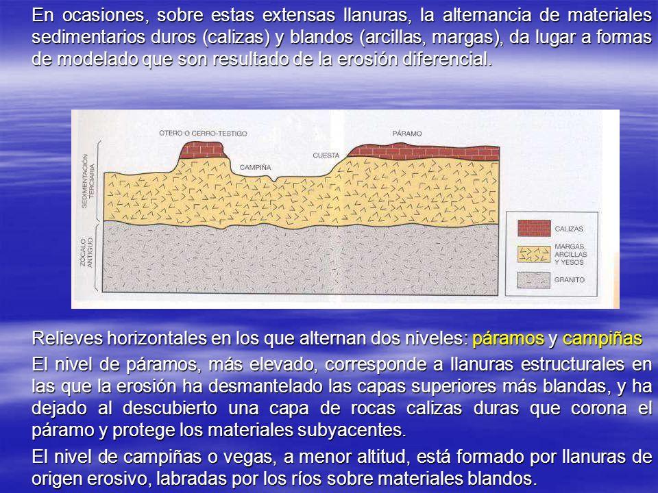 En ocasiones, sobre estas extensas llanuras, la alternancia de materiales sedimentarios duros (calizas) y blandos (arcillas, margas), da lugar a formas de modelado que son resultado de la erosión diferencial.