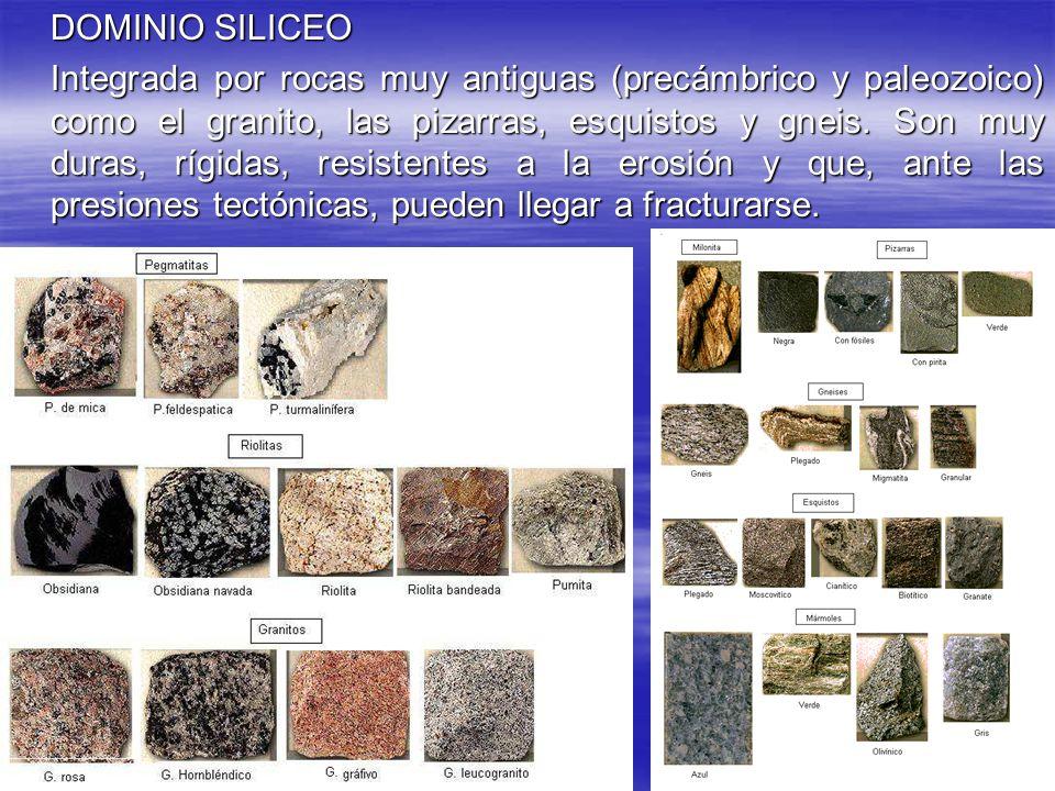 DOMINIO CALIZO O CALCÁREO Área donde predominan las rocas sedimentadas durante el Mesozoico y comienzos del terciario, que con el plegamiento alpino formaron los conjuntos montañosos de la zona oriental española.