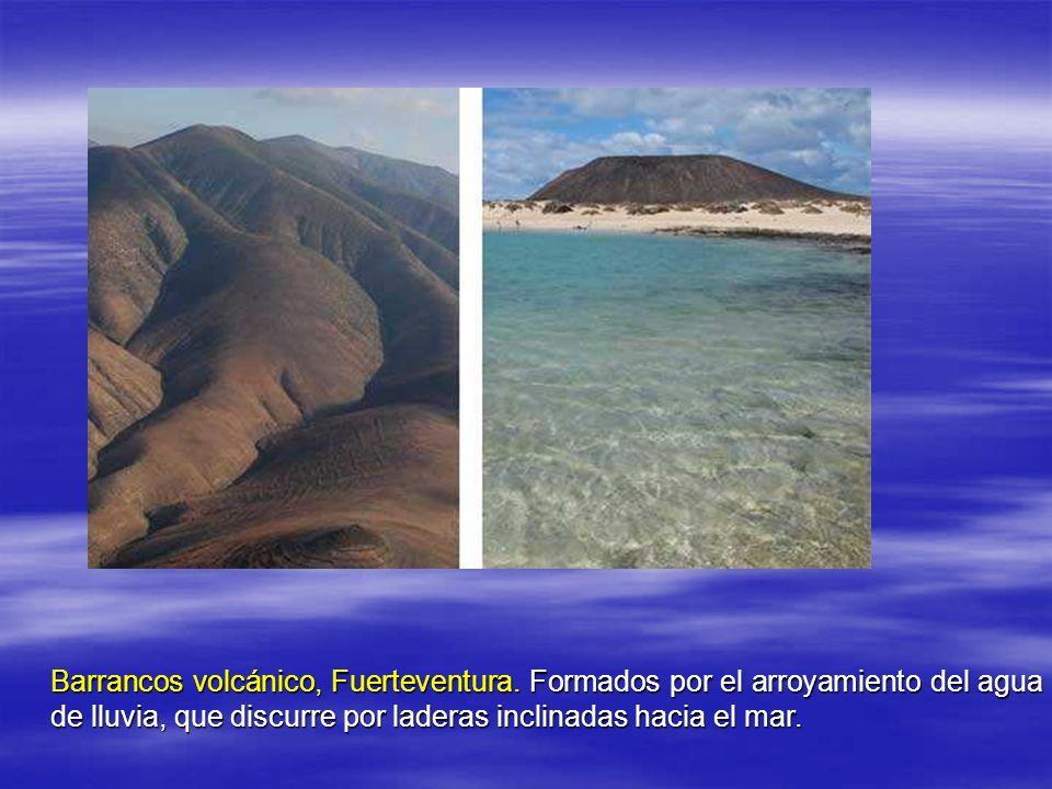 Barrancos volcánico, Fuerteventura.