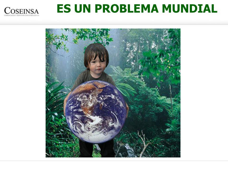 ES UN PROBLEMA MUNDIAL