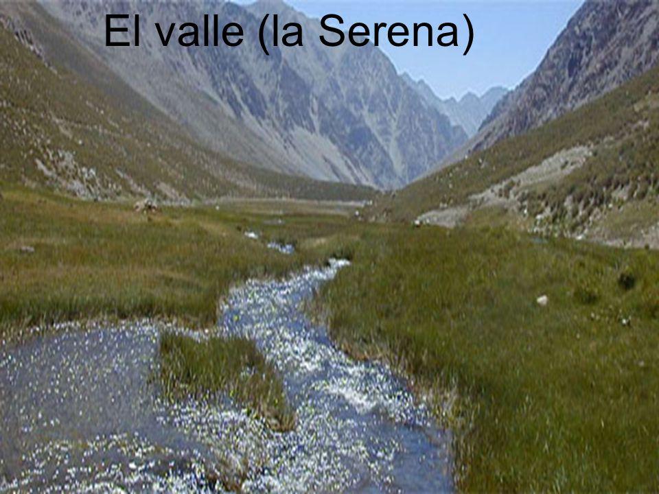 El valle El valle (la Serena)