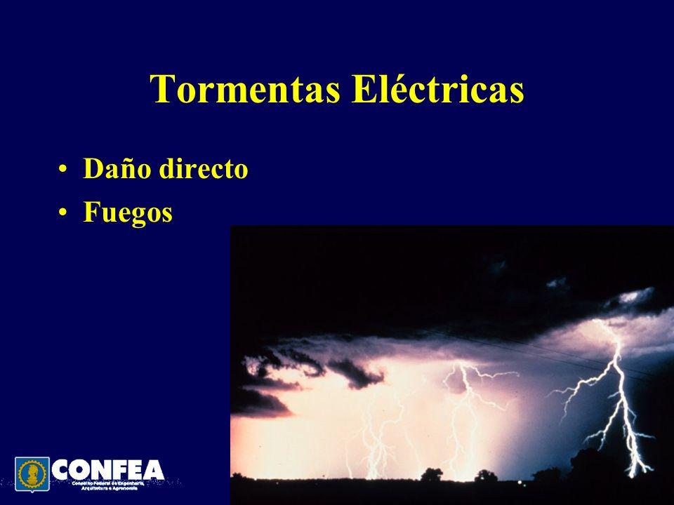 Tormentas Eléctricas Daño directo Fuegos