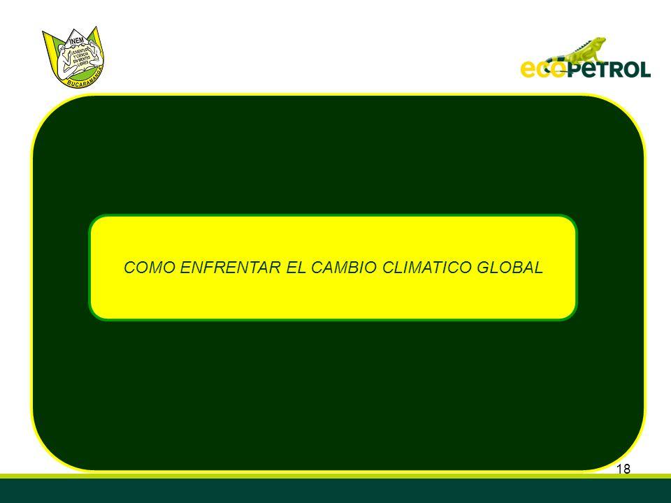 18 COMO ENFRENTAR EL CAMBIO CLIMATICO GLOBAL