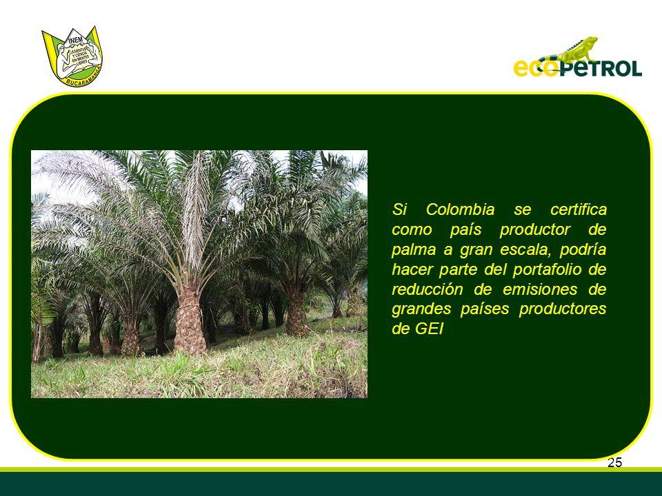 25 Si Colombia se certifica como país productor de palma a gran escala, podría hacer parte del portafolio de reducción de emisiones de grandes países