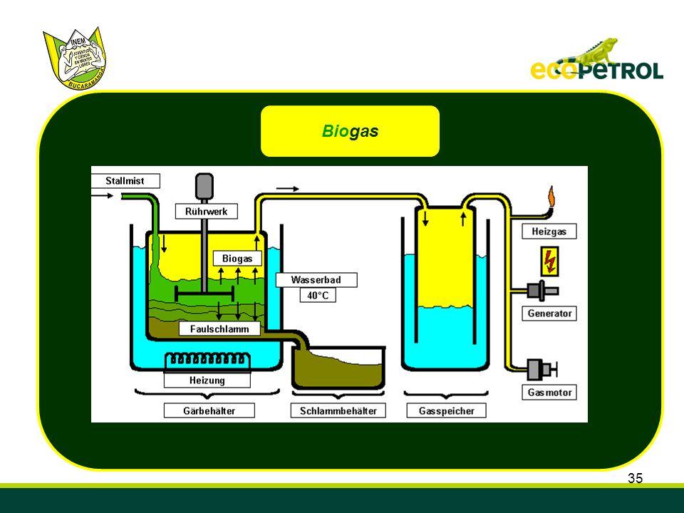 35 Biogas