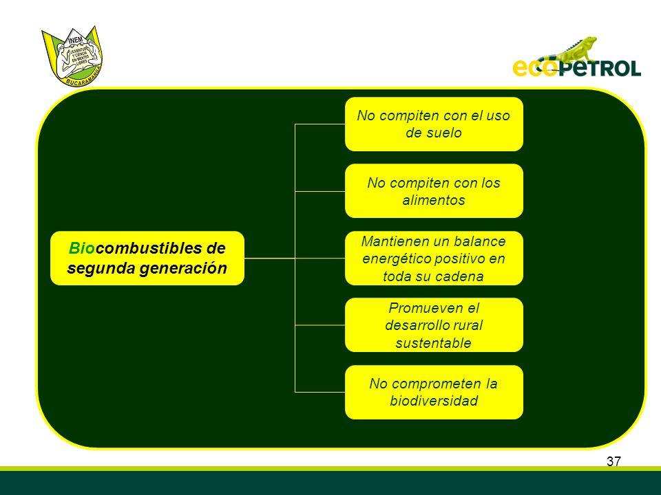 37 Biocombustibles de segunda generación No compiten con los alimentos No compiten con el uso de suelo Mantienen un balance energético positivo en tod
