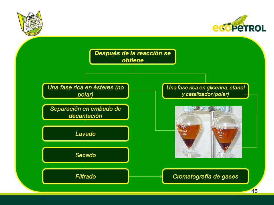 45 Después de la reacción se obtiene Separación en embudo de decantación Lavado Secado FiltradoCromatografía de gases Una fase rica en glicerina, etan