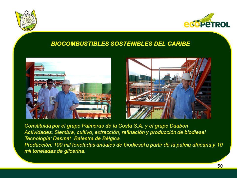 50 Constituida por el grupo Palmeras de la Costa S.A. y el grupo Daabon Actividades: Siembra, cultivo, extracción, refinación y producción de biodiese