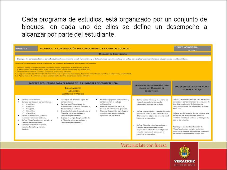 Cada programa de estudios, está organizado por un conjunto de bloques, en cada uno de ellos se define un desempeño a alcanzar por parte del estudiante