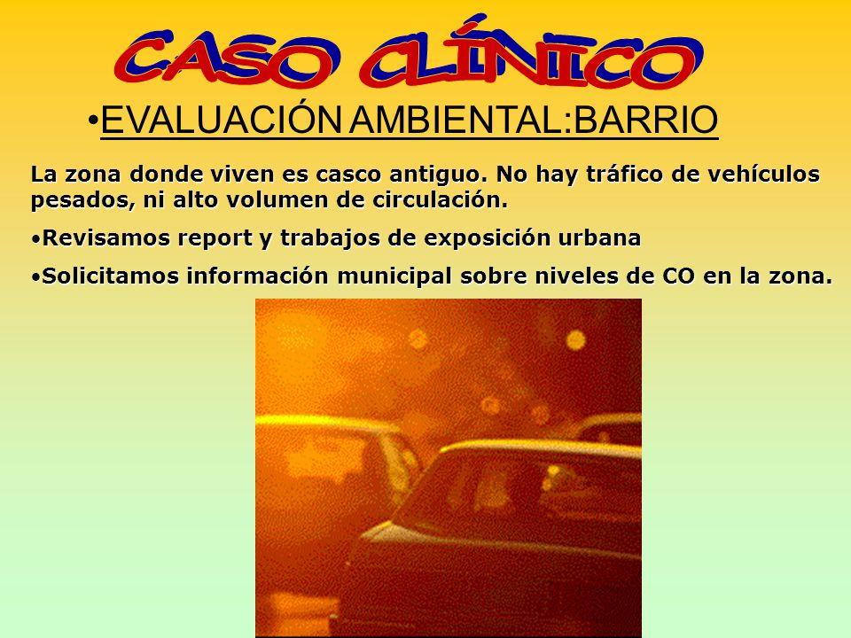 EVALUACIÓN AMBIENTAL:BARRIO La zona donde viven es casco antiguo. No hay tráfico de vehículos pesados, ni alto volumen de circulación. Revisamos repor
