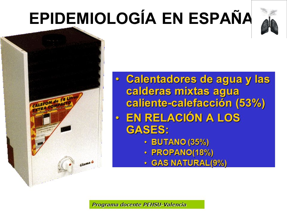 EPIDEMIOLOGÍA EN ESPAÑA Calentadores de agua y las calderas mixtas agua caliente-calefacción (53%)Calentadores de agua y las calderas mixtas agua cali