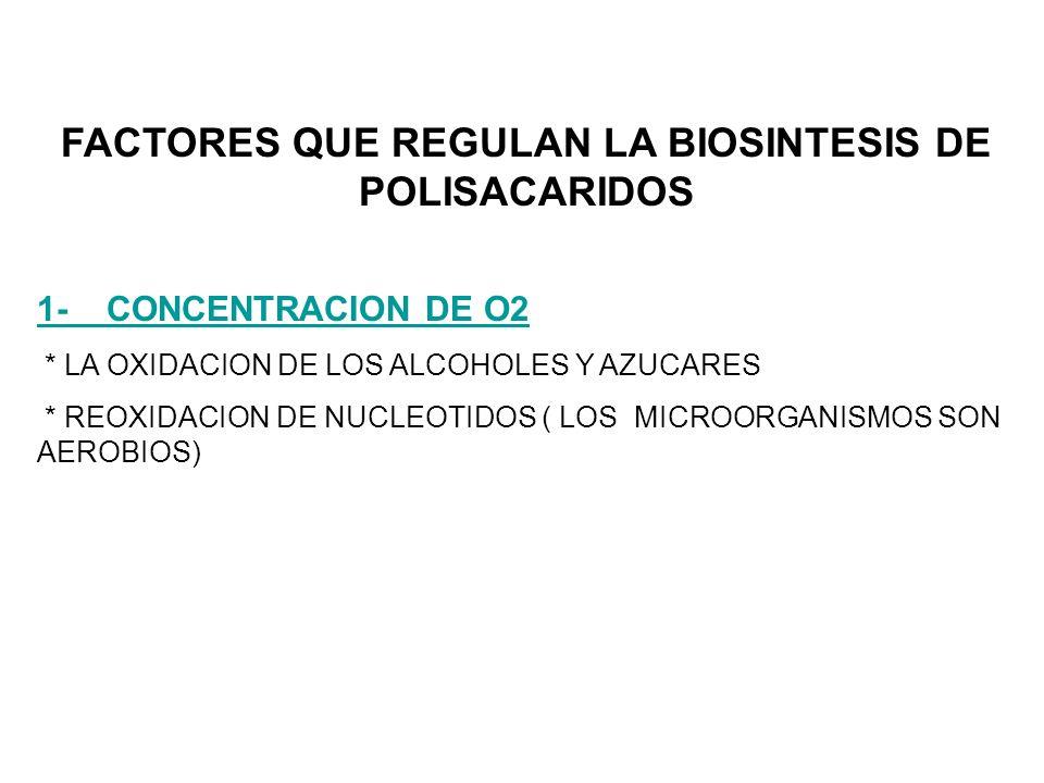 FACTORES QUE REGULAN LA BIOSINTESIS DE POLISACARIDOS 1- CONCENTRACION DE O2 * LA OXIDACION DE LOS ALCOHOLES Y AZUCARES * REOXIDACION DE NUCLEOTIDOS ( LOS MICROORGANISMOS SON AEROBIOS)