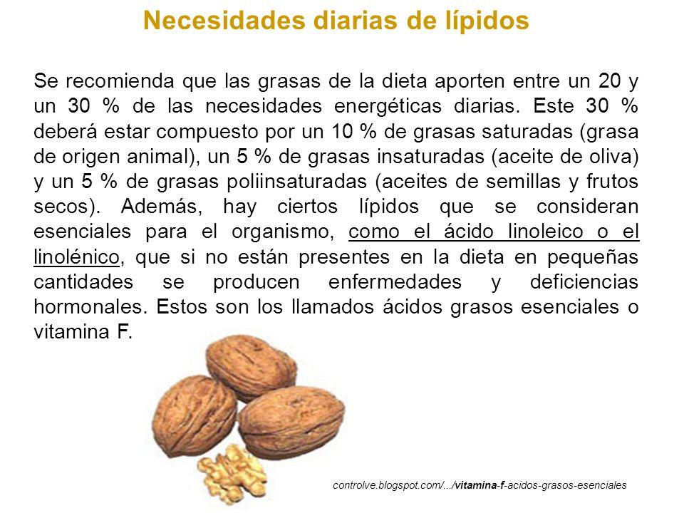 Necesidades diarias de lípidos Se recomienda que las grasas de la dieta aporten entre un 20 y un 30 % de las necesidades energéticas diarias. Este 30