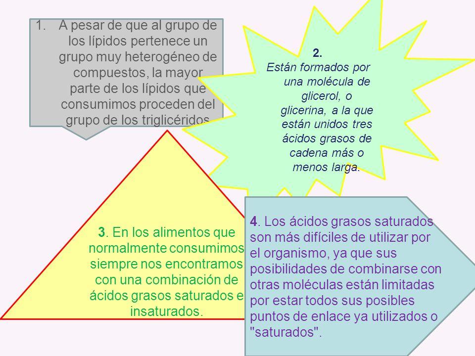 1.A pesar de que al grupo de los lípidos pertenece un grupo muy heterogéneo de compuestos, la mayor parte de los lípidos que consumimos proceden del g