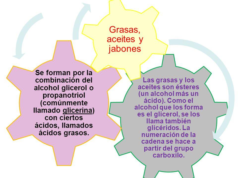 Las grasas y los aceites son ésteres (un alcohol más un ácido). Como el alcohol que los forma es el glicerol, se los llama también glicéridos. La nume