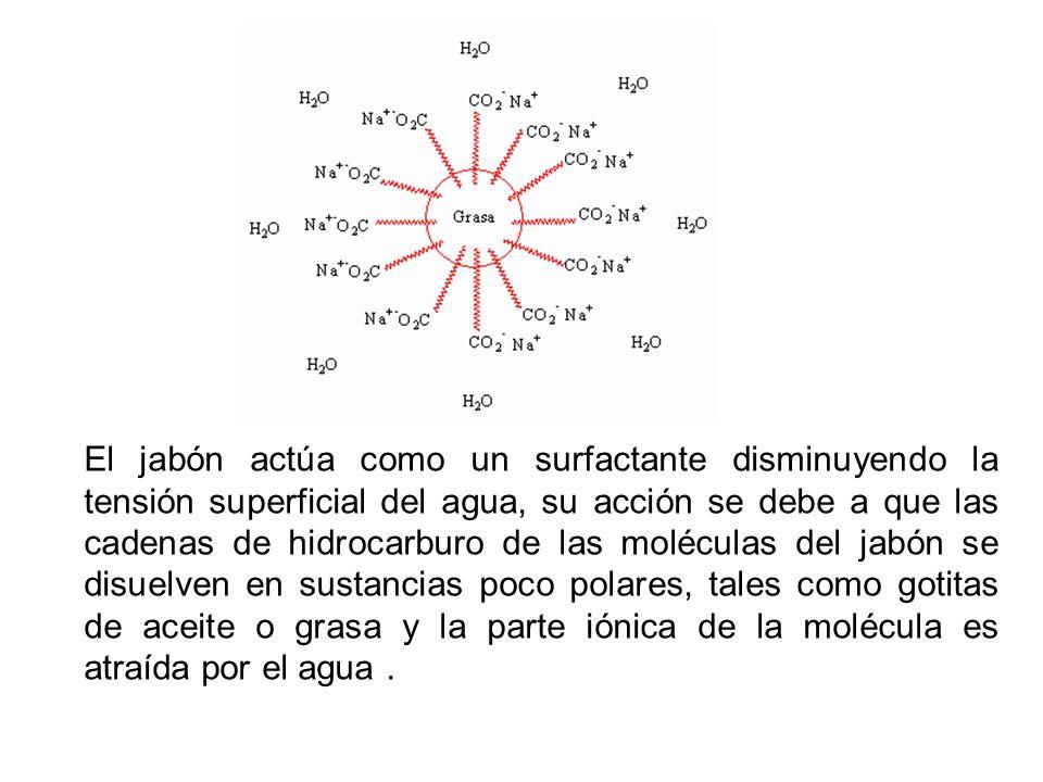 El jabón actúa como un surfactante disminuyendo la tensión superficial del agua, su acción se debe a que las cadenas de hidrocarburo de las moléculas