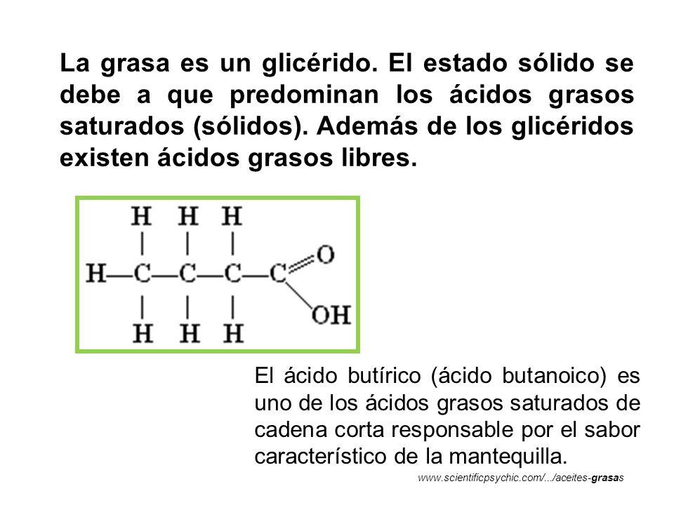 La grasa es un glicérido. El estado sólido se debe a que predominan los ácidos grasos saturados (sólidos). Además de los glicéridos existen ácidos gra