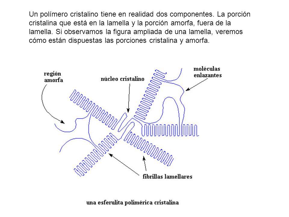 Un polímero cristalino tiene en realidad dos componentes. La porción cristalina que está en la lamella y la porción amorfa, fuera de la lamella. Si ob