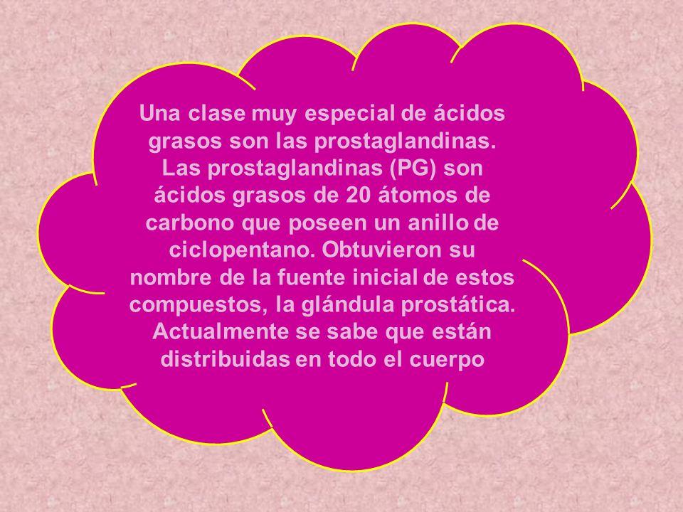 Una clase muy especial de ácidos grasos son las prostaglandinas. Las prostaglandinas (PG) son ácidos grasos de 20 átomos de carbono que poseen un anil