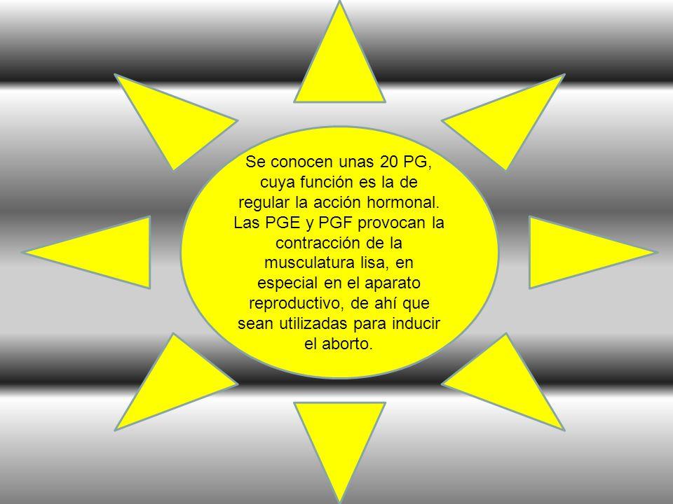Se conocen unas 20 PG, cuya función es la de regular la acción hormonal. Las PGE y PGF provocan la contracción de la musculatura lisa, en especial en