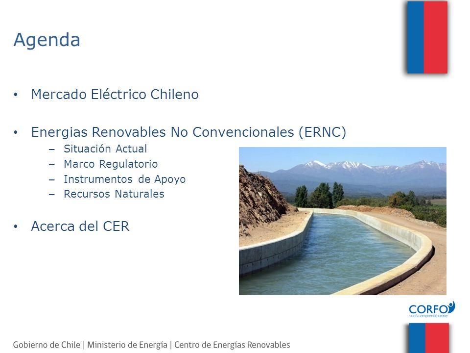 Instrumentos de Apoyo y Fomento Pre-inversión: Pre inversión de proyectos Financiamiento de Proyectos (KFW) Concursos Solares (PV-CSP) Proyectos Demostrativos Ley Net Balancing Consorcios Tecnológicos (Biocombustibles) SST Viviendas Sociales