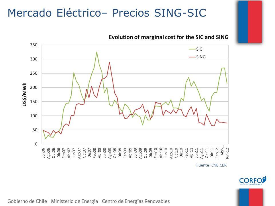 Agenda Mercado Eléctrico Chileno Energias Renovables No Convencionales (ERNC) – Situación Actual – Marco Regulatorio – Instrumentos de Apoyo y Fomento – Recursos Naturales Acerca del CER