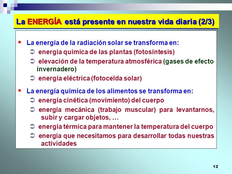 12 La ENERGÍA está presente en nuestra vida diaria (2/3) La energía de la radiación solar se transforma en: energía química de las plantas (fotosíntes