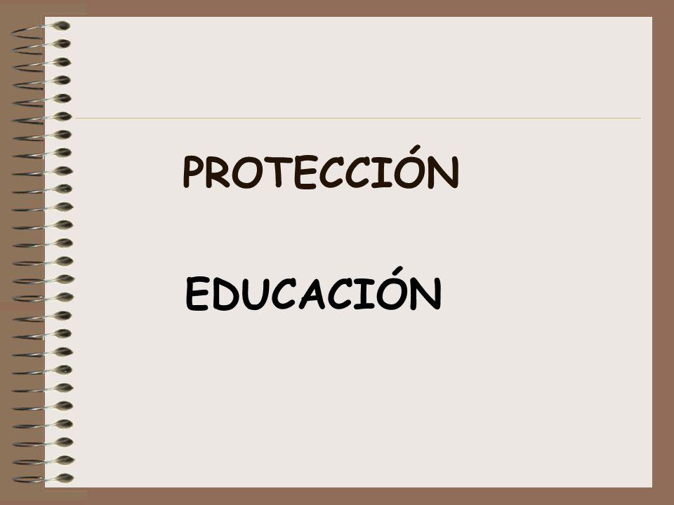 PROTECCIÓN EDUCACIÓN