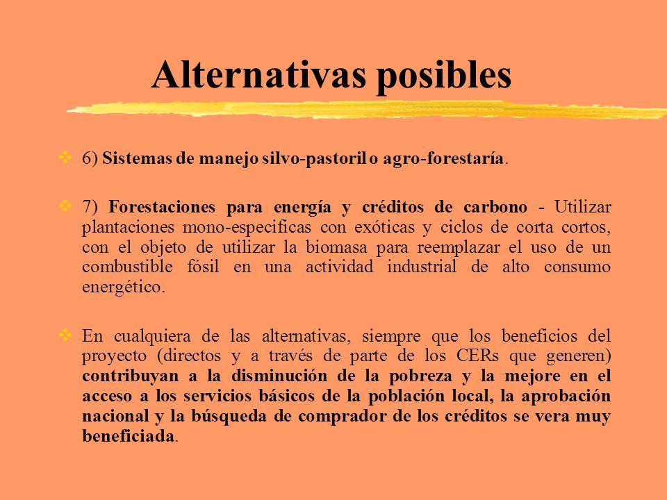 Alternativas posibles 6) Sistemas de manejo silvo-pastoril o agro-forestaría. 7) Forestaciones para energía y créditos de carbono - Utilizar plantacio