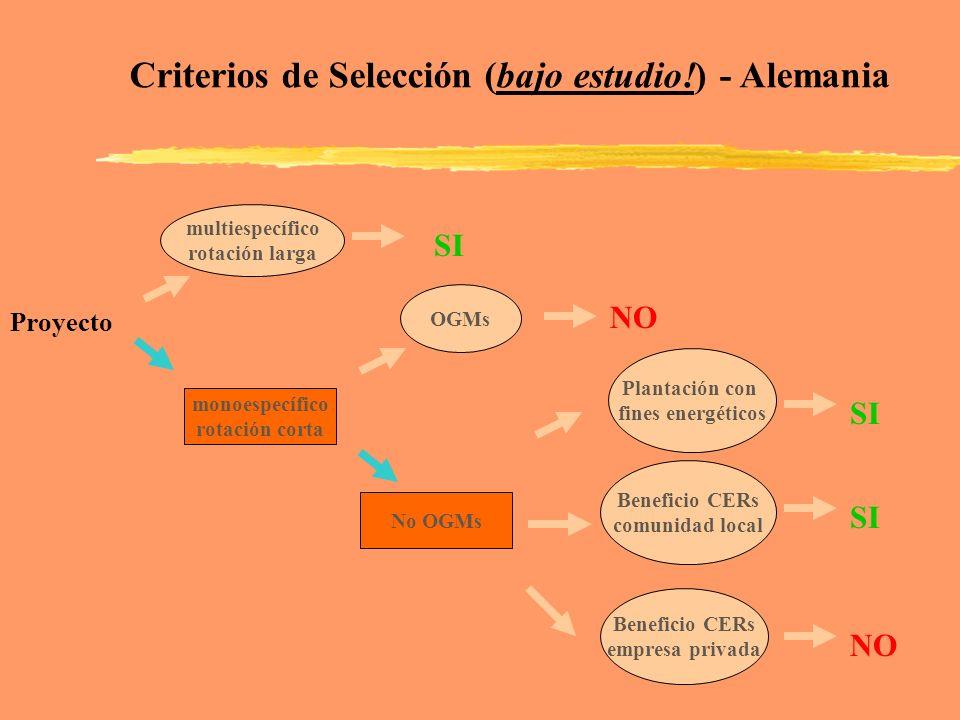 multiespecífico rotación larga monoespecífico rotación corta SI Criterios de Selección (bajo estudio!) - Alemania Proyecto OGMs Plantación con fines e