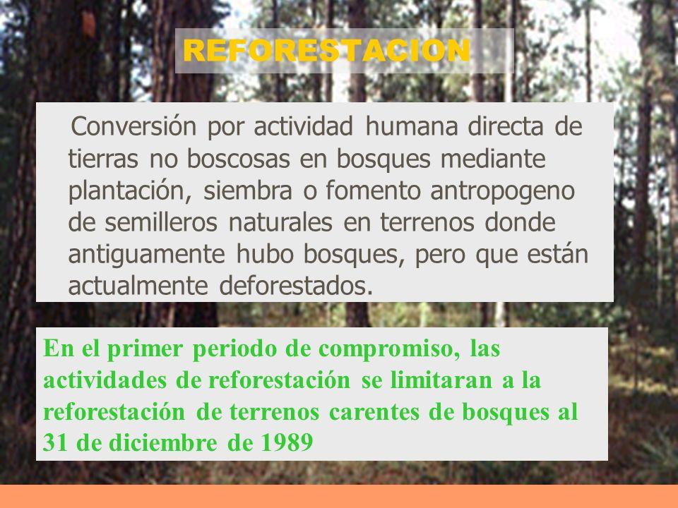 REFORESTACION Conversión por actividad humana directa de tierras no boscosas en bosques mediante plantación, siembra o fomento antropogeno de semiller