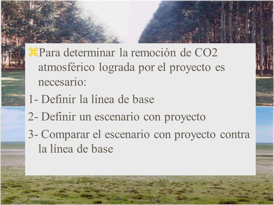 zPara determinar la remoción de CO2 atmosférico lograda por el proyecto es necesario: 1- Definir la línea de base 2- Definir un escenario con proyecto