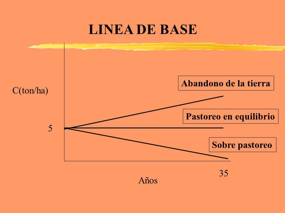 C(ton/ha) Años 5 35 LINEA DE BASE Pastoreo en equilibrio Abandono de la tierra Sobre pastoreo
