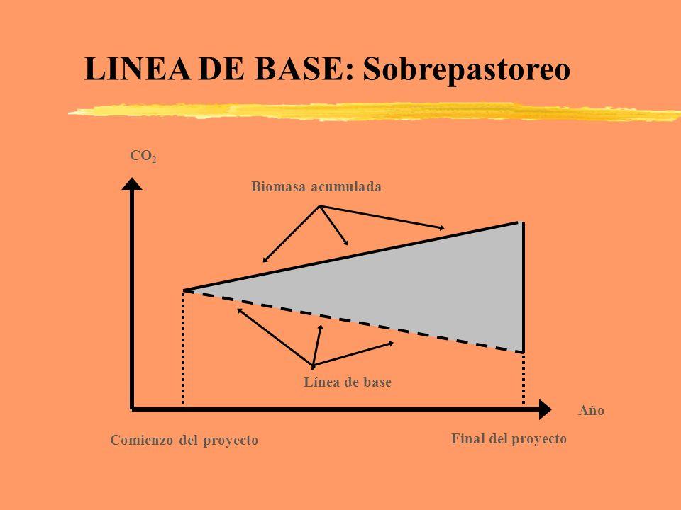 CO 2 Línea de base Biomasa acumulada Comienzo del proyecto Final del proyecto Año LINEA DE BASE: Sobrepastoreo