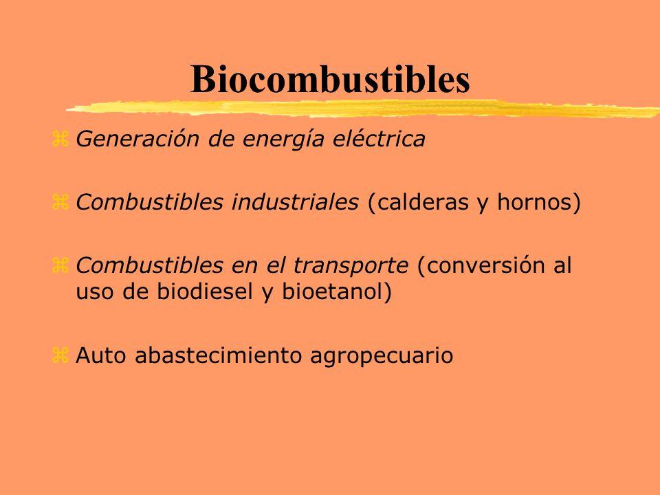 Biocombustibles zGeneración de energía eléctrica zCombustibles industriales (calderas y hornos) zCombustibles en el transporte (conversión al uso de b