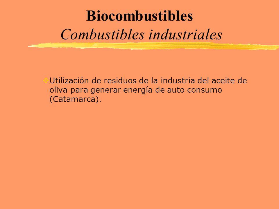 Biocombustibles Combustibles industriales Utilización de residuos de la industria del aceite de oliva para generar energía de auto consumo (Catamarca)