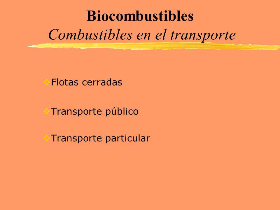 Biocombustibles Combustibles en el transporte Flotas cerradas Transporte público Transporte particular