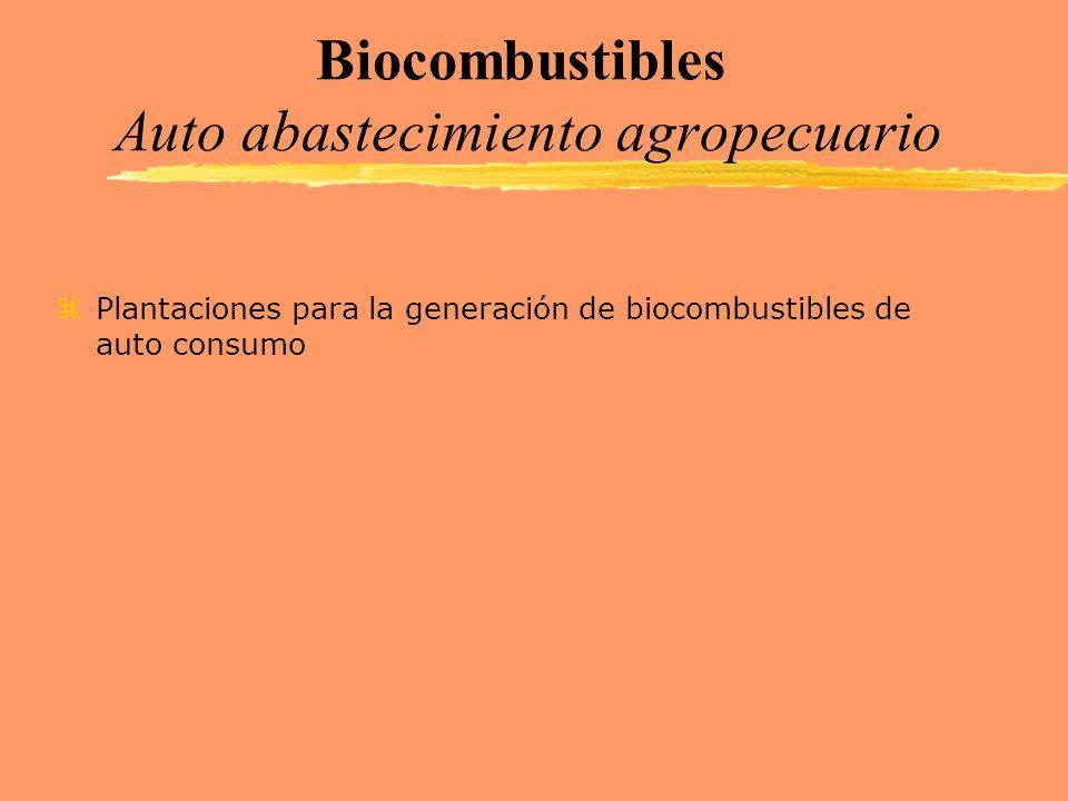 Biocombustibles Auto abastecimiento agropecuario zPlantaciones para la generación de biocombustibles de auto consumo