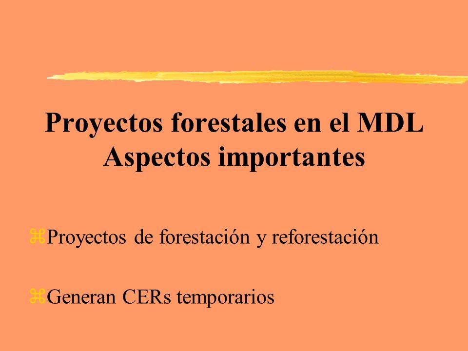 Proyectos forestales en el MDL Aspectos importantes zProyectos de forestación y reforestación zGeneran CERs temporarios