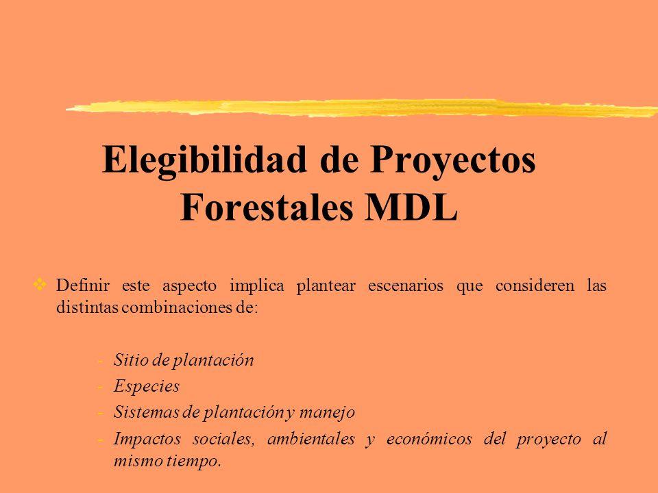 Elegibilidad de Proyectos Forestales MDL Definir este aspecto implica plantear escenarios que consideren las distintas combinaciones de: -Sitio de pla
