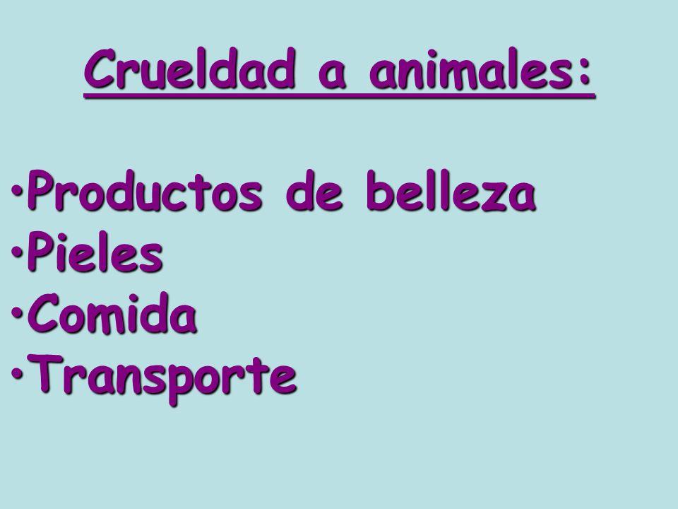 Crueldad a animales: Productos de bellezaProductos de belleza PielesPieles ComidaComida TransporteTransporte