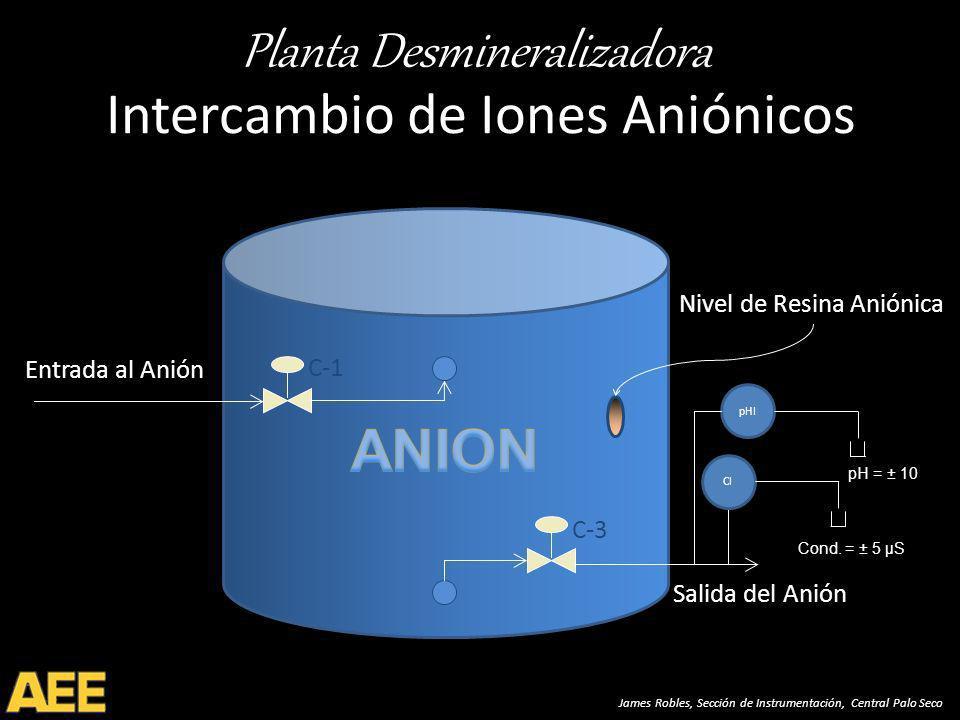 Planta Desmineralizadora James Robles, Sección de Instrumentación, Central Palo Seco Intercambio de Iones Aniónicos C-1 Entrada al Anión Salida del Anión C-3 CI pHI pH = ± 10 Cond.