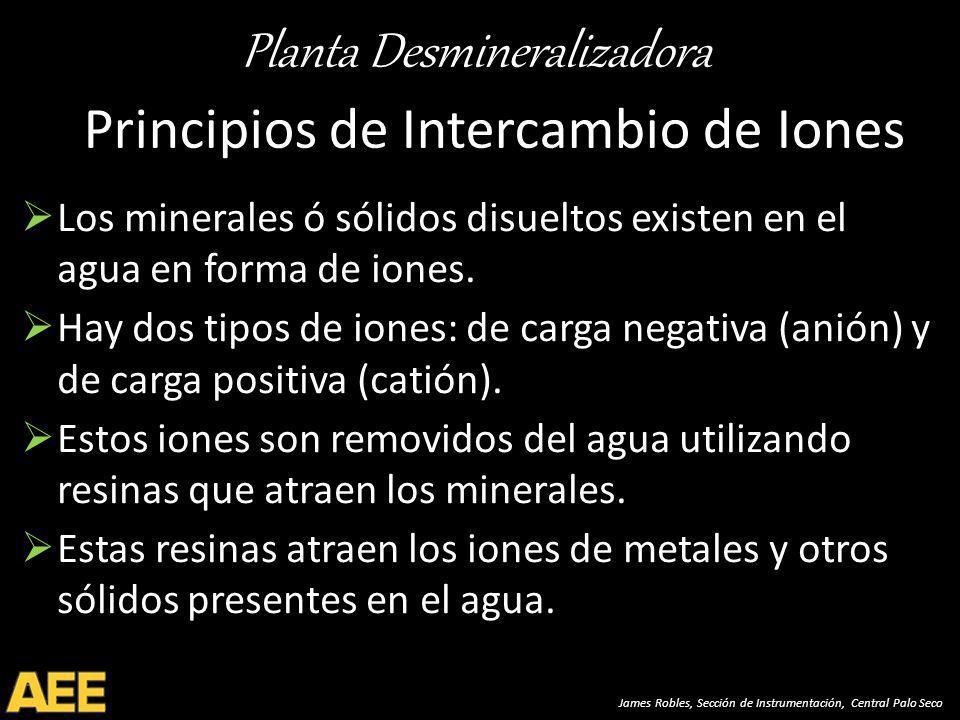 Planta Desmineralizadora James Robles, Sección de Instrumentación, Central Palo Seco Principios de Intercambio de Iones Los minerales ó sólidos disueltos existen en el agua en forma de iones.