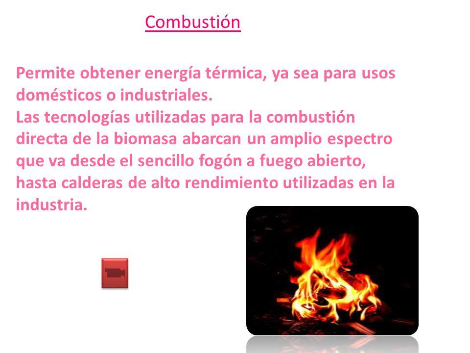 Combustión Permite obtener energía térmica, ya sea para usos domésticos o industriales. Las tecnologías utilizadas para la combustión directa de la bi