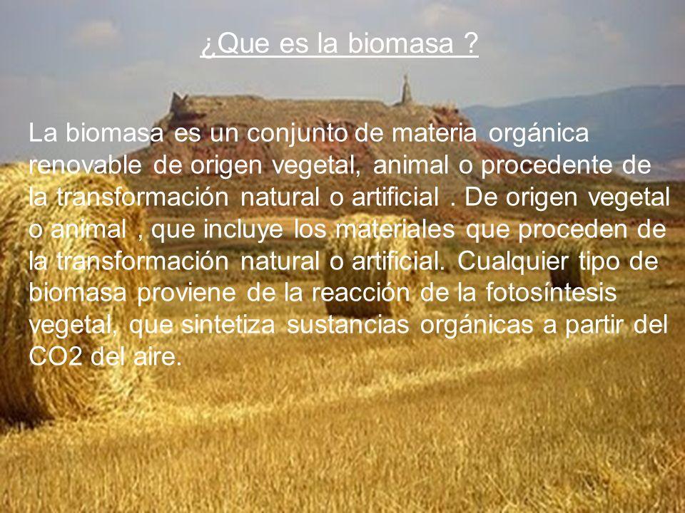 La biomasa es un conjunto de materia orgánica renovable de origen vegetal, animal o procedente de la transformación natural o artificial. De origen ve