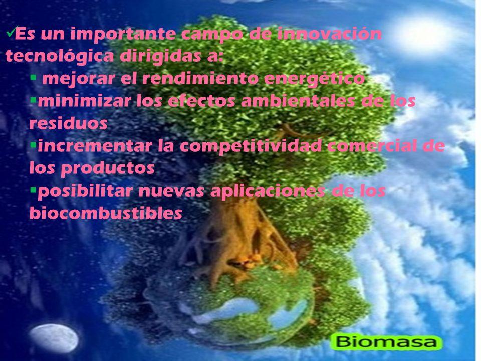 Es un importante campo de innovación tecnológica dirigidas a: mejorar el rendimiento energético minimizar los efectos ambientales de los residuos incrementar la competitividad comercial de los productos posibilitar nuevas aplicaciones de los biocombustibles