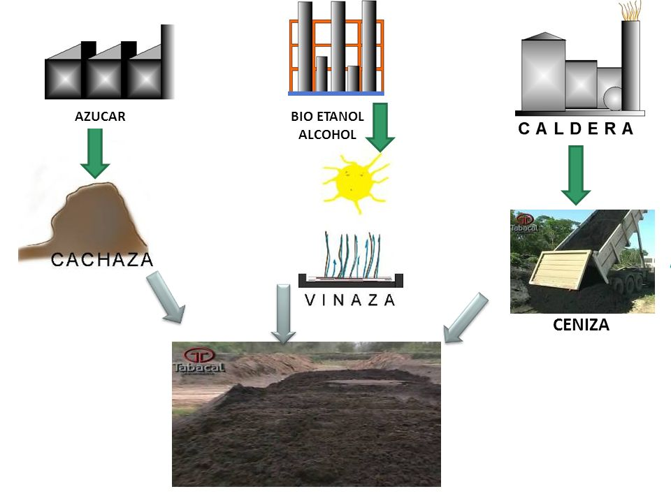 * Nueva destilería, 18 meses de obra, capacidad 60.000 m3. * Nueva caldera y cogeneración, 36 meses, 200kg/h vapor, 40 Mw. 60 Millones de dólares de i