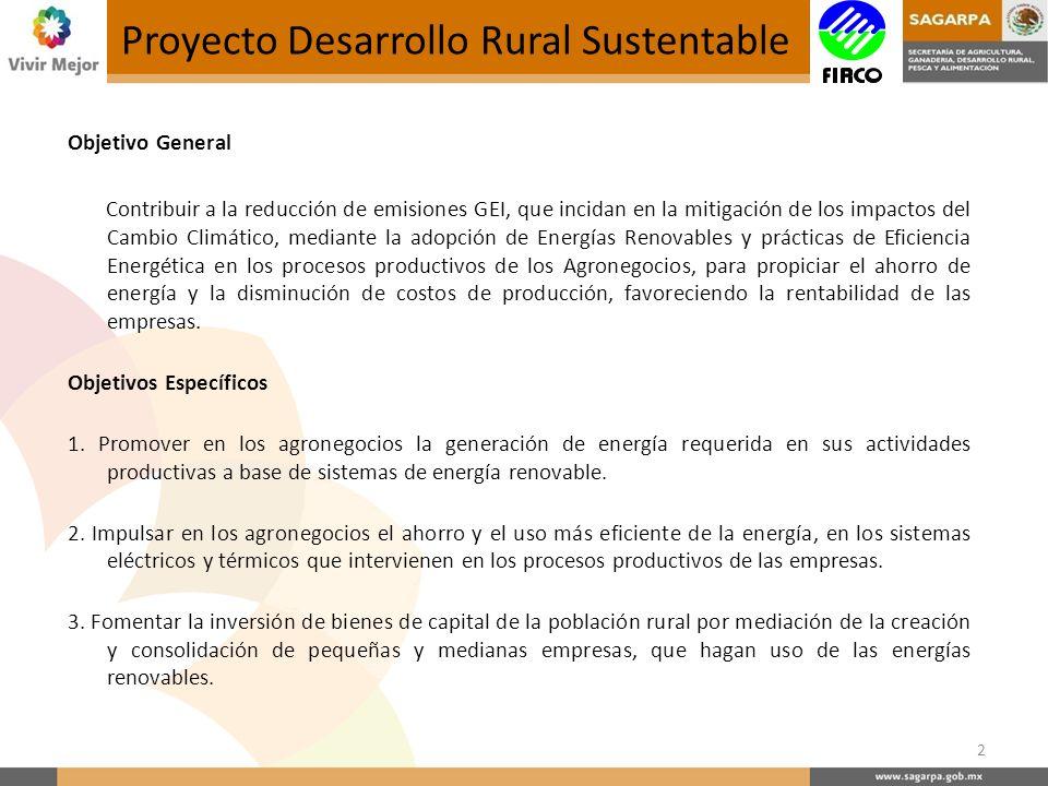 Proyecto Desarrollo Rural Sustentable Objetivo General Contribuir a la reducción de emisiones GEI, que incidan en la mitigación de los impactos del Cambio Climático, mediante la adopción de Energías Renovables y prácticas de Eficiencia Energética en los procesos productivos de los Agronegocios, para propiciar el ahorro de energía y la disminución de costos de producción, favoreciendo la rentabilidad de las empresas.